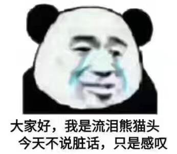 我是流泪熊猫头