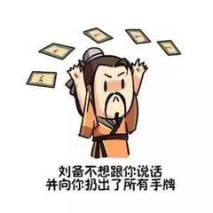 刘备不想跟你说话并向你扔出了所有手牌