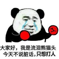 大家好我是流泪熊猫头今天不说脏话只想打人