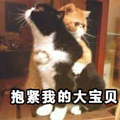 抱紧我的大宝贝