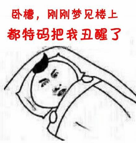 卧槽刚刚梦见楼上都特码把我丑醒了