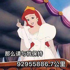 那么请与我保持92955886.7公里