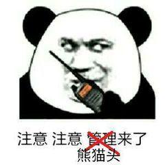 注意注意管理来了熊猫头