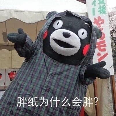 熊本熊谈减肥人生哲理